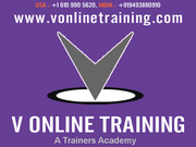   Sales Force CRM Online Training by Expert